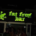 The fat frog