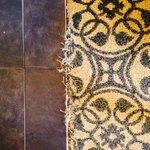 Wet frayed carpet in rooms! Yuk