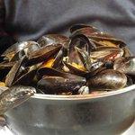 A huge pot of mussels