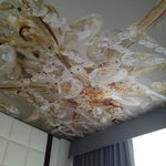 Very boutique-y feel to the hotel. This was the ceiling in our room!