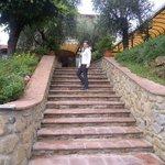 Particolare della scalinata antistante l'ingresso