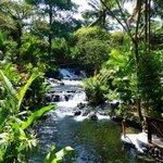 Hot springs river.