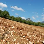 I nostri terreni dove coltiviamo lenticchie Biologiche