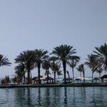 palmen en strand