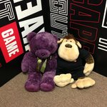 Our mascots - Teddy and King Kong