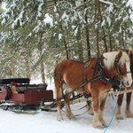 Our sleigh.