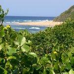 Strand und Wildnis