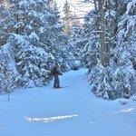 xc ski area nearby