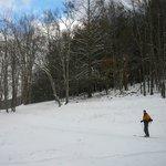 ski area nearby