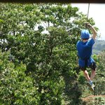 great ziplining and tarzan swing
