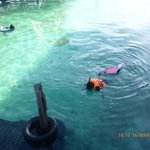 snorkle in front of arung hayat