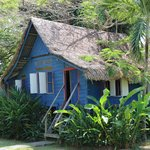 Blue Ginger house
