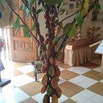 Arbol de cacao (a escala)
