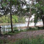 Chakambakam lagoon