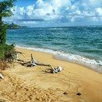 BEACH AT PONO KAI