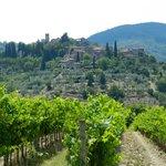 Surrounding hills from Villa Bordoni