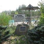 the pool garden Aug 2013