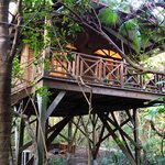 Our treehouse!