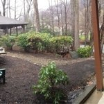 Back area with gazebo, hammock, and the creek!
