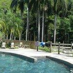 Beautiful pool warmed by the sun