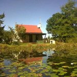 Froggy Pond Cottage at Forest Edge