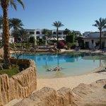 Heated Lagoon Pool