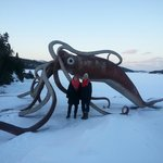 Giant Squid in Winter