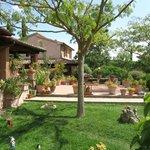 Ampio giardino con tavoli e panche