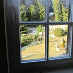 Blick aus dem Fenster 1