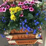 Flowers in the bike basket (with their logo)