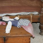 Doll inside of the house