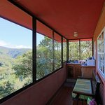 Sunroom with kithchenette and view of rainforest,