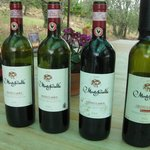 The wines we sampled