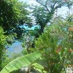 vistas desde la terraza-comedor