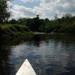 Canoeing on the Peace River