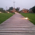 Ricefm Field Farm
