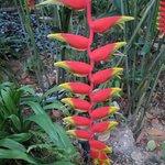 Beautiful plantings everywhere