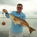 "33"" Redfish"