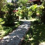 Beautiful gardens throughout