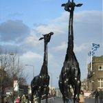 Скульптуры жирафов