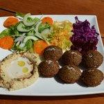 veterinarian falafel plate