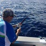 action kingfish