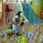 Slides and ball pit