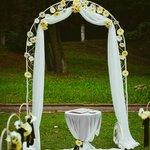весільна арка/wedding arch