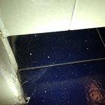 Spider web at the Bathroom door
