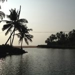 Backwaters next to homestay