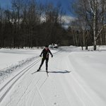 Skiing through the Green Mtn National Forest.