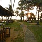 Beach bar.... beautiful tropic atmosphere ...