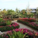 Giardini del resort