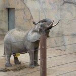 Im neuen Elefantenhaus - Sonntag 23.03.2014